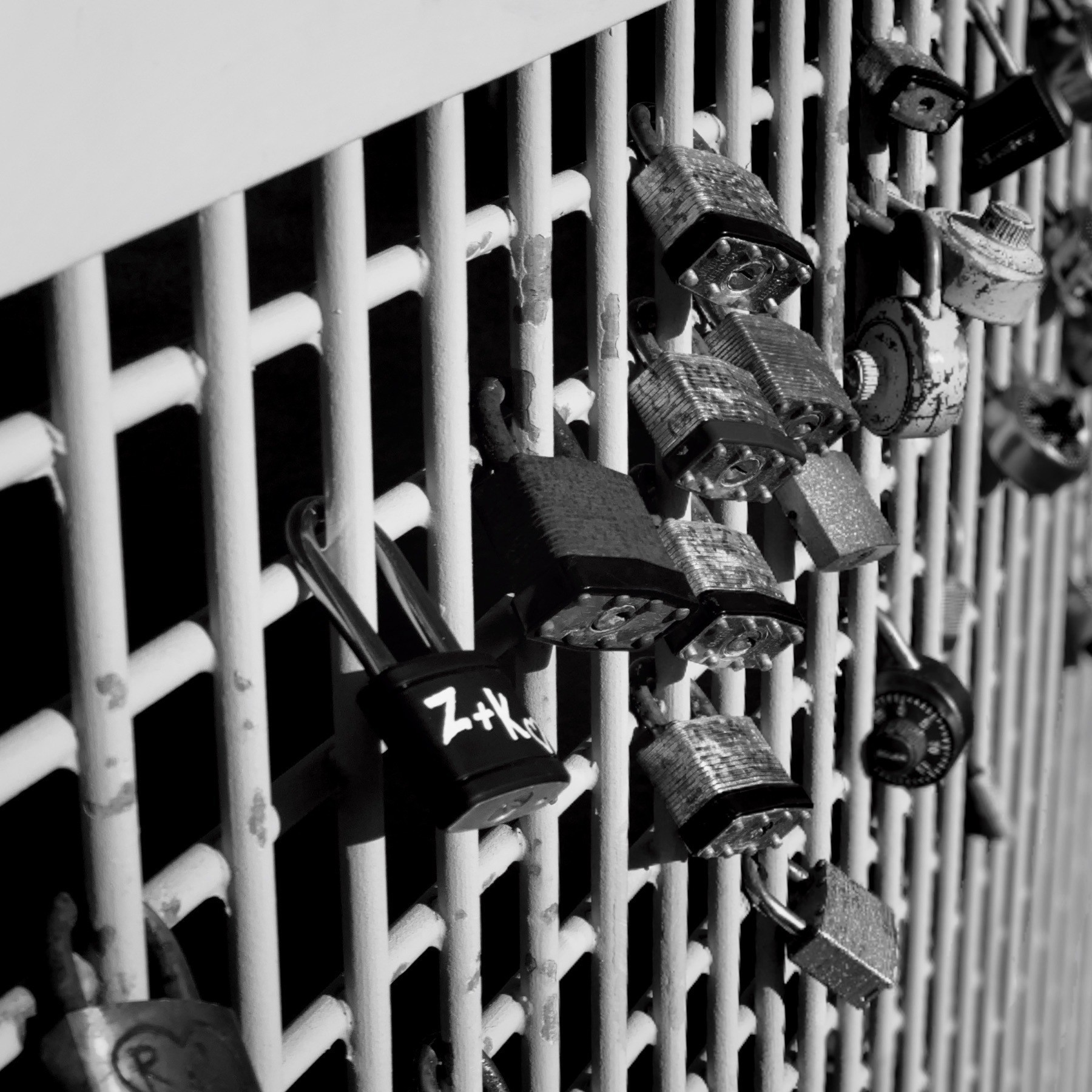 Padlocks attached to an iron gate.