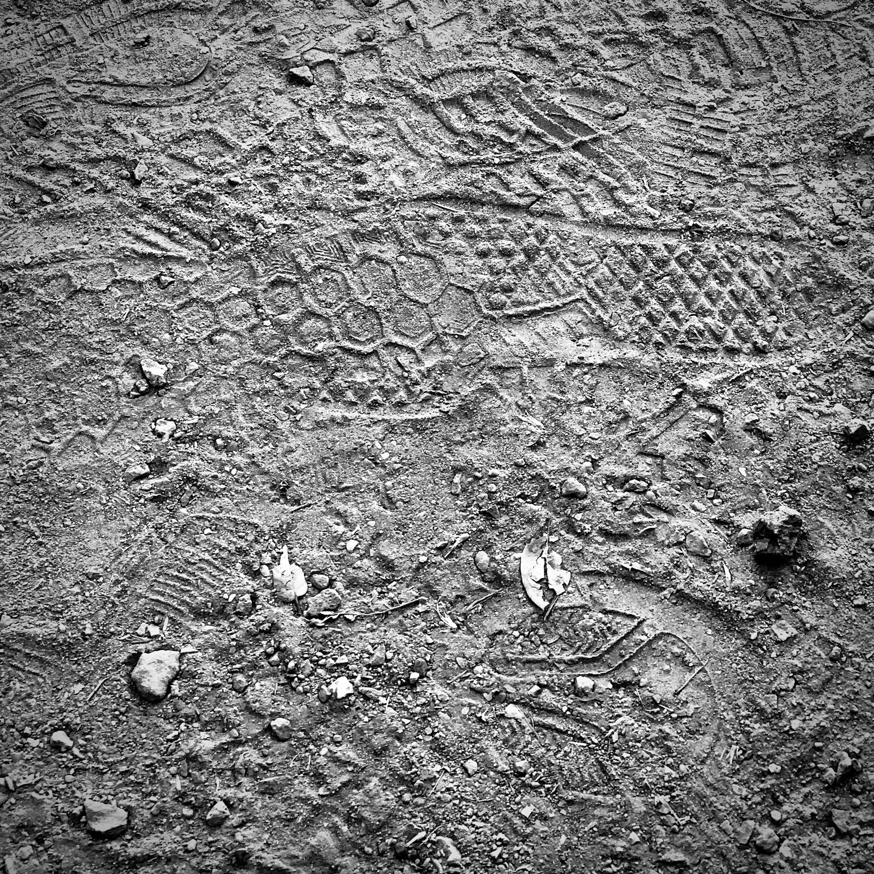 Footprints in dusty rock path, black and white.