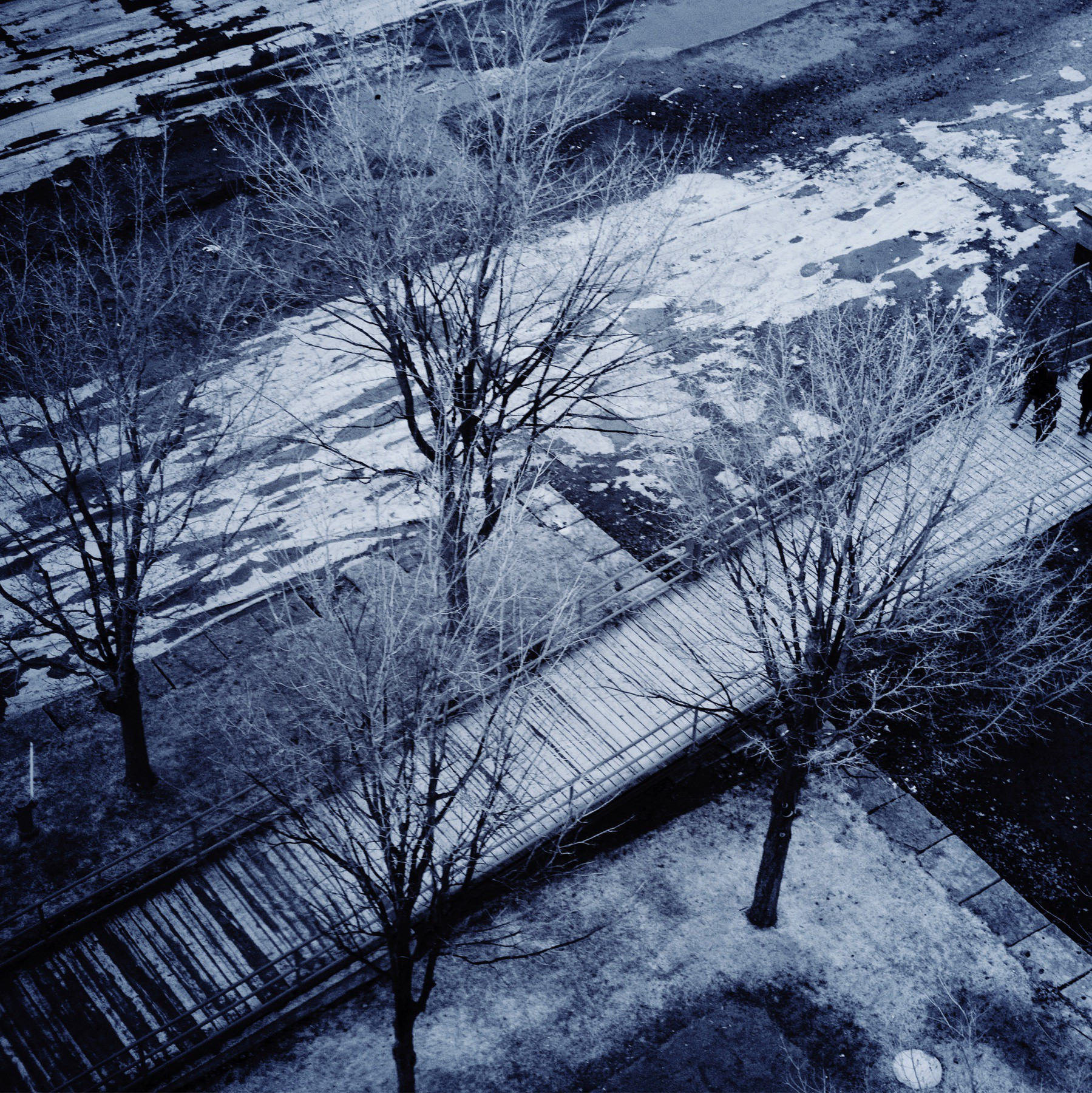 Aerial view of winter trees and wooden walkway in Montreal.