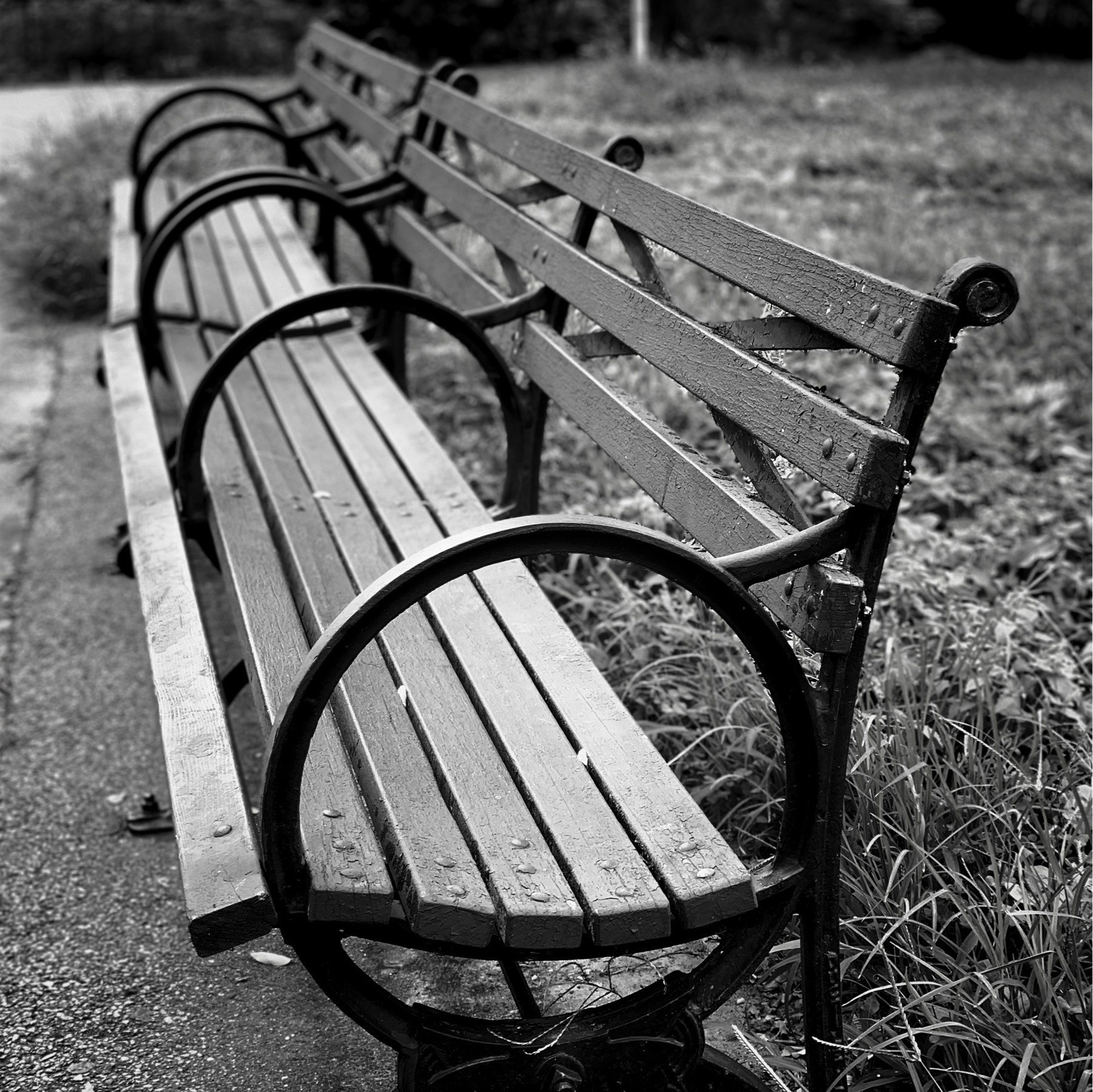 Black and white park bench.