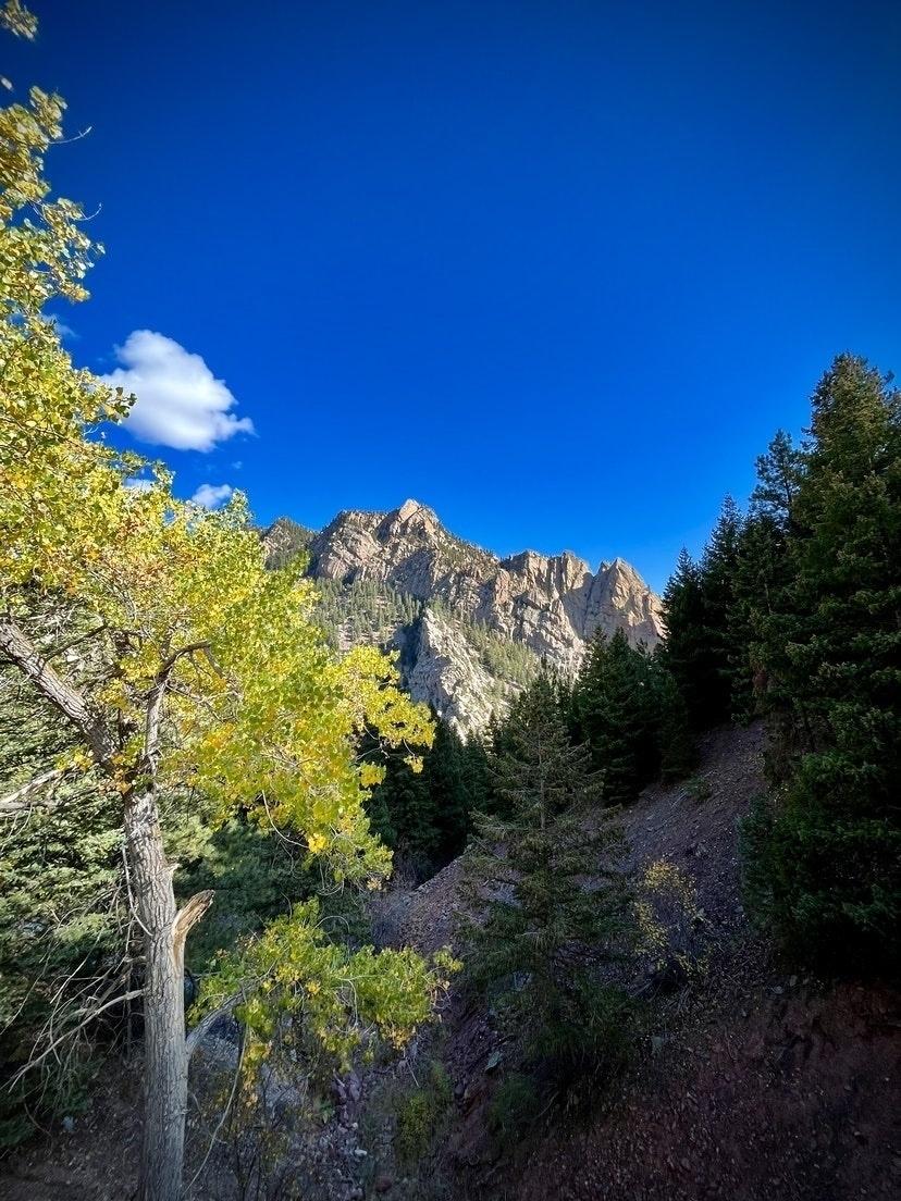 El Dorado Canyon. Fall trees. Blue sky.