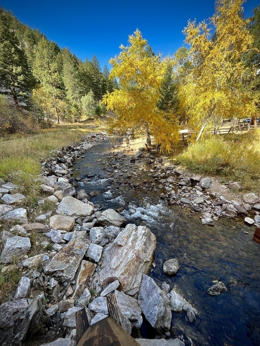 Creek running through canyon with fall trees.