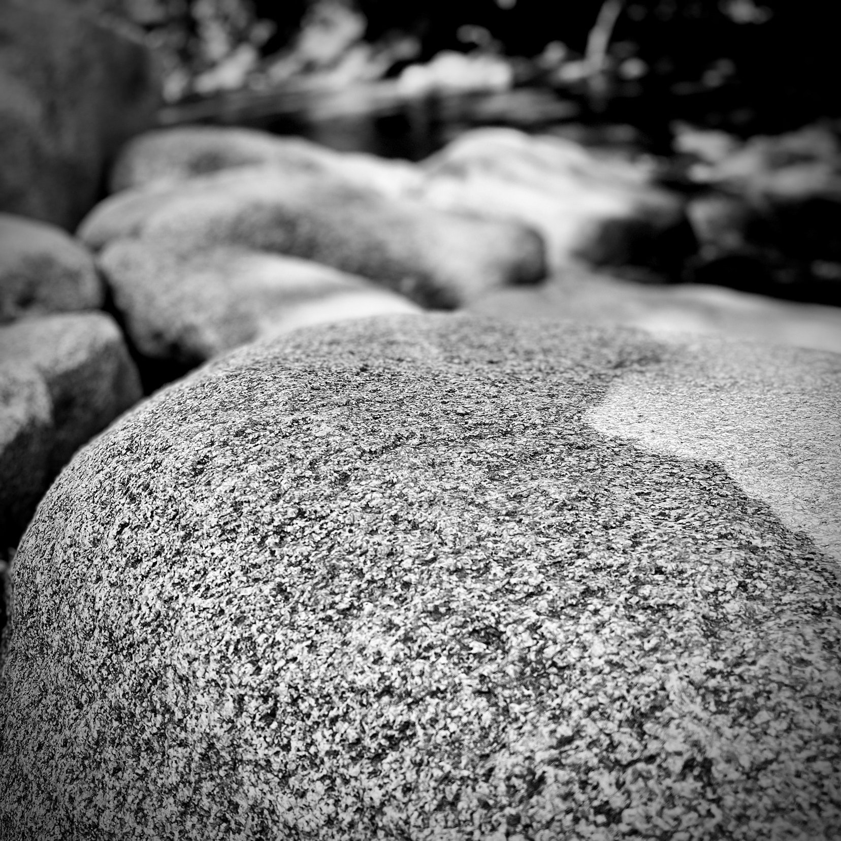Stone along a creek bed. Black and White.