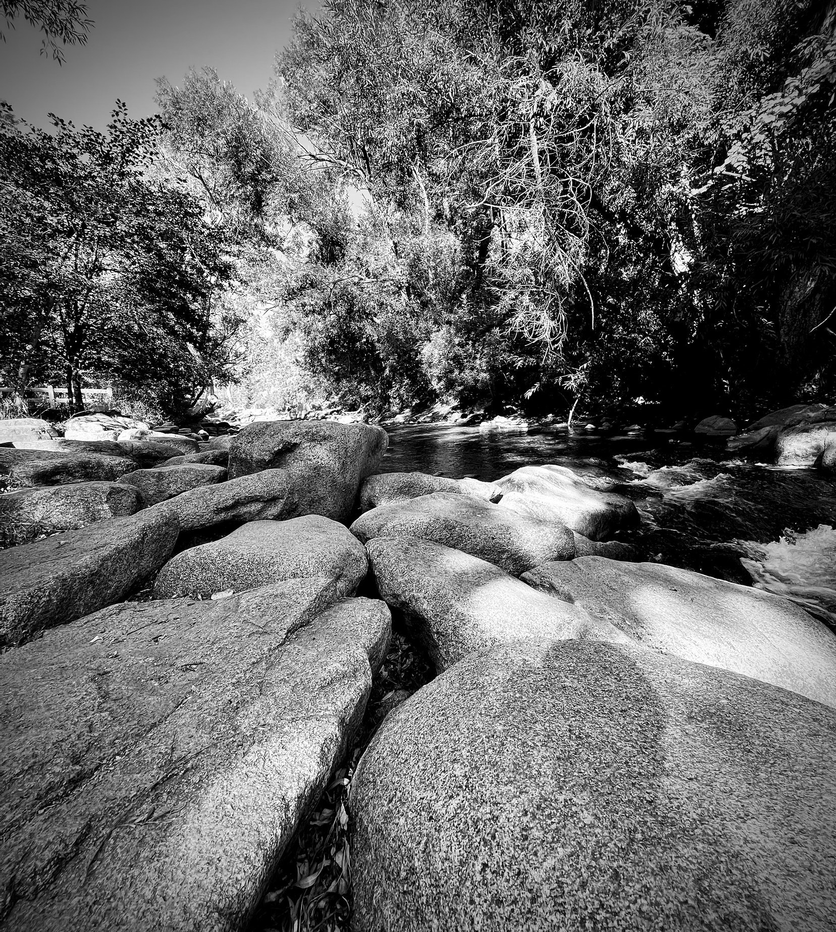 Stones by a creek. Black and White.